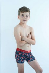 ART 622 LODY MEN BOXER ESTAMPADO (2)